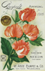 Vintage seed catalog cover, Burpee's Annual, 1916